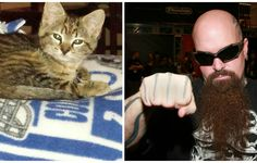 Metal Band, Slayer and Their Crew Rescue a Freezing Little Kitten