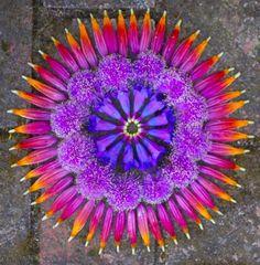Mandala's in de natuur kunnen we zelf maken!  https://www.facebook.com/pages/Healthy-Vibrant-You/381747648567846