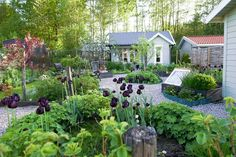 Instagram Landscape Design, Garden Design, Scandinavian Garden, Garden Cottage, Gardening Tips, Hacks, Instagram Posts, Plants, Landscape Designs