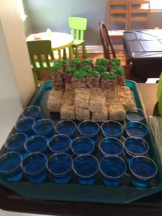 minecraft party | My son's Minecraft party-complete with pails of water