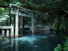 """榛の字(しんのじ-Shin no Ji) on Twitter: """"#一度は行ってみたい日本の絶景 こちらのお写真では「鹿島神宮」と言う場所にある 「御手洗池」と云う御池の様なのですが これは確かに行きたくなってしまう美しい光景ですねぇ(*´ `*) https://t.co/3CaqsQd1bH"""""""