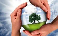El huerto y el control Biológico , acciones que nos llevan a mejorar el cultivo y planeta, de esta forma no contribuyes a crear especies mas resistentes