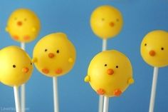 Chick cake pops.  I have a contact to get cake pops!!!