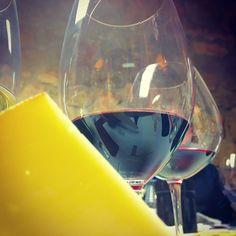 Wein Touristen auf den Spuren der Trauben & Dinos in der La Rioja (Spanien)