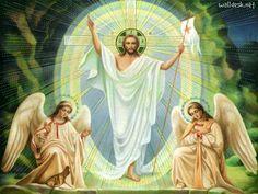 """Respondió Jesús: """"Yo soy el camino, la verdad y la vida. Nadie viene al Padre, sino por mí. »  (Juan 14: 6)"""