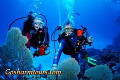 Intro Dive course and snorkeling excursion excludes excluded: Entrance to Ras Mohammed, Tips  http://gosharmtours.com/intro-dive-course-snorkeling-sharm-el-sheikh