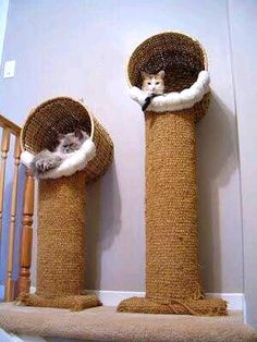 47 Brilliant Easy Homemade DIY Cat Toys for Your Furry Friend – Fournitures pour animaux Animal Room, Diy Cat Bed, Cat House Diy, Cat Beds, Lit Chat Diy, Diy Jouet Pour Chat, Diy Cat Scratching Post, Diy Cat Tower, Homemade Cat Toys