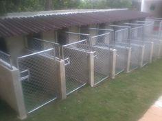 Canil completo, portões, grades laterais, e telhado