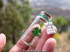 Legendary Good gift, good luck Good luck with exams New job Klee Kl . Legendary Good gift, good luck Good luck with exams New job clover Small message in a bottle of min Bottle Charms, Bottle Necklace, Diy Gifts, Best Gifts, Good Luck Gifts, Neuer Job, Lucky To Have You, Message In A Bottle, Diy Birthday