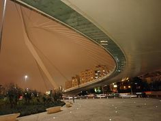#Jerusalem, Bridge of Strings, 2008 (Santiago Calatrava) #calatrava #bridge #architecture #design