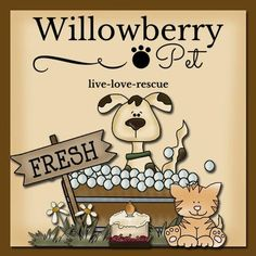 Browse unique items from WillowberryPet on Etsy, a global marketplace of handmade, vintage and creative goods. Pet Odor Candles, Pet Odors, Pet Home, Happy Animals, Dog Grooming, Etsy Seller, Pets, Creative, Handmade