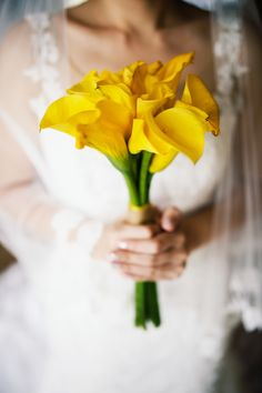 Pretty yellow tulip wedding bouquet | Project by Summer Story Photography http://www.bridestory.com/summer-story-photography/projects/the-wedding-of-maya-weily