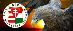 Turul Lion Sculpture, Owl, Statue, Bird, Owls, Birds, Sculptures, Sculpture