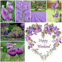 Collage of Beautiful Colors Happy Weekend Quotes, Happy Saturday, Happy Friday, Happy Tuesday, Beautiful Collage, Beautiful Flowers, Collages, Weekend Greetings, Weekend Images