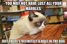 You may not have lost all of your marbles, but there's definitely a hole int he bag ~ grumpy cat