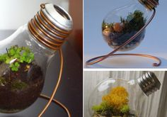 Creative Tiny Planter Ideas | Furnish Burnish