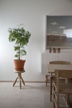 MJÖLK . Scandinavian & Japanese design & furniture | A R T N A U