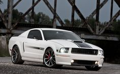 Shelby Mustang GT/CS
