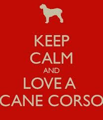 Keep Calm and Love a Cane Corso!