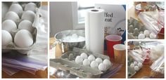 paper bag and eggs | Egg Drop Challenge Set Up Egg Zip Locks Bags Cereal Ice Water Paper ...