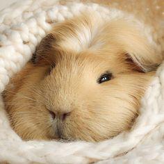 Relax, take it easy by lieveheersbeestje.deviantart.com on @deviantART