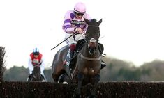 Horse Racing - Latest Results, News and Tips   Daily Mail Online