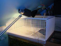 DIY Turtle Basking Spot