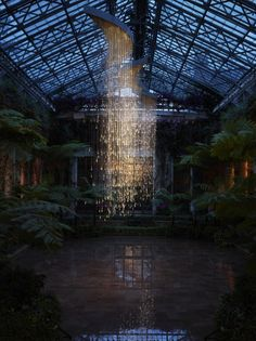 [INS] 실내에서 비오고 있나요?/ Bruce Munro Light Art in Cheekwood Botanical Garden