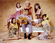 Elvis Presley on set of Paradise, Hawaiian Style Elvis Presley Born, Elvis Presley Movies, Marianna Hill, University Of South Dakota, Butterworth, Hawaii Usa, Weak In The Knees, Music Licensing, Korean Actresses