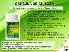 Capsulas de Chitosa Tiens Contacto Cel: 3188441900 http://productossaludablestiens.blogspot.com.co/2013/11/capsulas-de-chitosa-chitosan-chitin.html