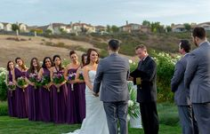 San Francisco wedding photographer and videographer Creative Cinema: Affordable wedding photographer  in Napa Valley & ...