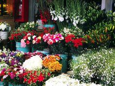 La pérgola de las Flores