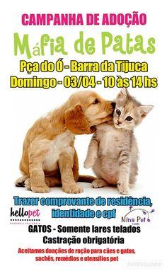 BONDE DA BARDOT: RJ: Máfia de Patas realiza campanha de adoção de cães e gatos na Barra da Tijuca, neste domingo (03/04)