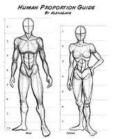Exceptional Drawing The Human Figure Ideas. Staggering Drawing The Human Figure Ideas. Proportions Du Corps, Drawing Body Proportions, Human Body Drawing, Body Reference Drawing, Human Figure Drawing, Art Reference Poses, Anatomy Reference, Drawing Tips, Drawing Tutorials