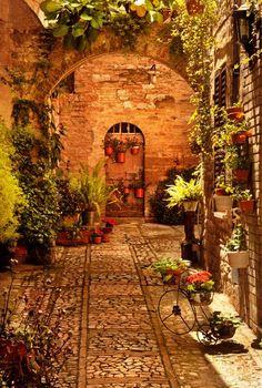 Tuscany (http://www.best-italian-wine.com/wineries-near-florence.html)