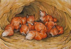 little foxes in their burrow by Victoria-Poloniae on deviantART