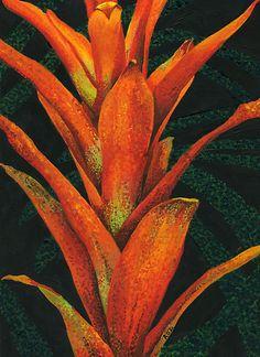 Orange Bromeliad by Roz Edwards Art Deco Bed, Dark Backgrounds, Flower Art, Backdrops, Leaves, Orange, Studio, Red, Painting