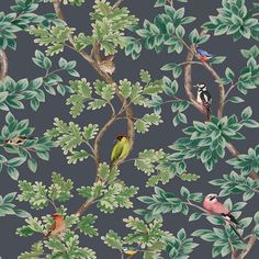 Osborne And Little Netherfield 01 Wallpaper W7450-01 Kitchen Wallpaper, Home Wallpaper, Wallpaper Roll, Nature Wallpaper, Wallpaper Samples, Pattern Wallpaper, Wallpaper Ideas, Multicoloured Wallpaper, Animal Delivery