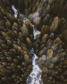 Photo by @alexstrohl - Location: Widgeon Creek BC #thetrickytree by thetrickytree