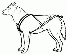 How to make a pulling harness for your dog. A bit of reading, but a great start point