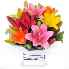 Firefly - a cute arrangement of bright mixed tiger lilies.