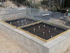 A Small Tucson Desert Garden: Critter Protection