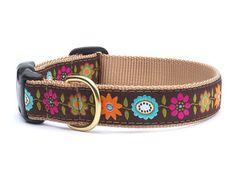 Bella Floral Dog Collar