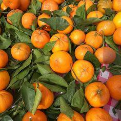 Zserbógolyó - a legegyszerűbb recept perc munkával) - csakapuffin. Orange, Fruit, Instagram