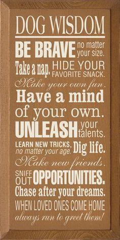 Dog Wisdom :)