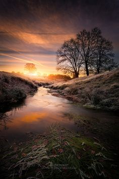 """sundxwn: """" The stream sunrise by SC Pictures* """" Near a creek in Auvergne sunrise, the ground is frozen and the sun is reflected on every blade of grass, France. All Nature, Amazing Nature, Beautiful World, Beautiful Places, Landscape Photography, Nature Photography, Nature Pictures, Pretty Pictures, Beautiful Landscapes"""