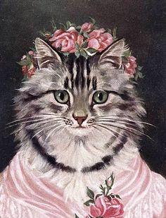 rose hat cat