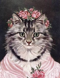 rose hat cat