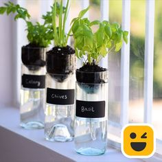 Wine bottle planter – diy home crafts Diy Crafts Hacks, Diy Home Crafts, Garden Crafts, Garden Projects, Garden Ideas, Diy Garden, Wood Crafts, Fun Crafts, Paper Crafts