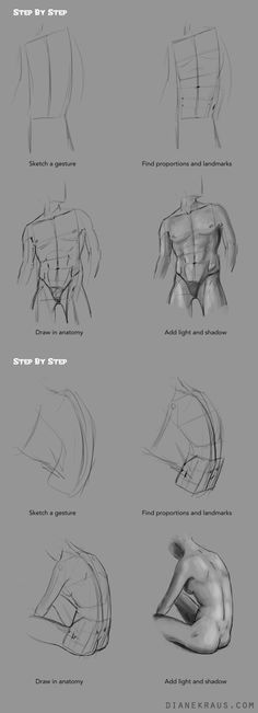 """dianekraus: """" At long last, the hip tutorial appears! Poor neglected hips, such an awesome part of the body but so difficult to do *right*. It really just takes a few plotted landmarks and they'll..."""